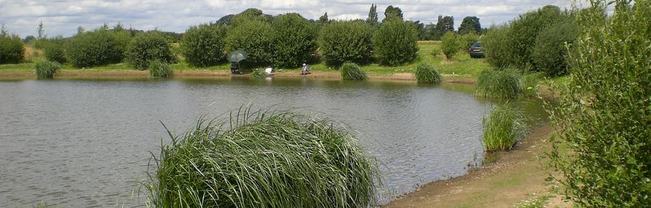 Hackett Lakes